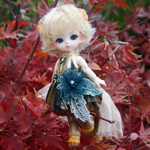 Tiny Delf SATYRESS Choco Cookie ver. Limited